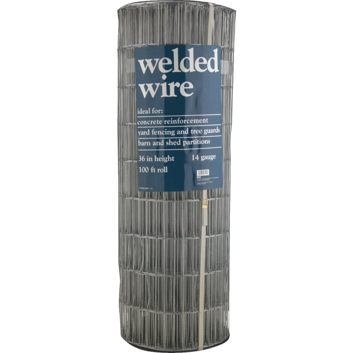 72 In. H. x 100 Ft. L. (2x4) Galvanized Welded Wire Fence Image 2